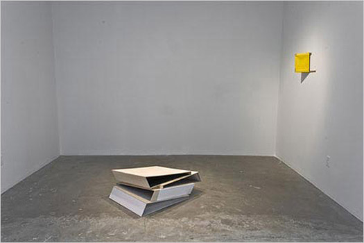 Installation view @ Diaz Contemporary, 2008